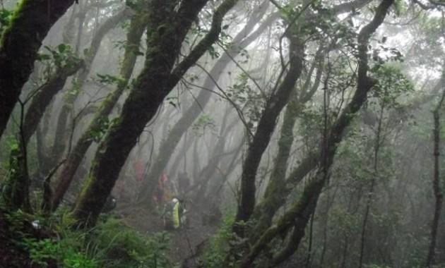 Cerita Mistis Gunung Gede
